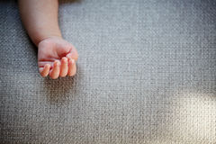 New Born Baby Hand. The Delicacy of New Born Baby Hand Royalty Free Stock Photos