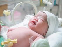 New born baby infant sleep in the incubator at hospital Royalty Free Stock Photo