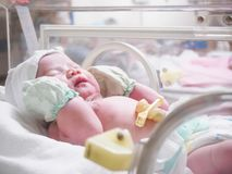 New born baby sleep in the incubator at hospital. New born baby infant sleep in the incubator at hospital Stock Photos