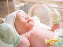 New born baby infant sleep in the incubator at hospital. Room stock photos