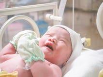 New born baby infant sleep in the incubator. At hospital Royalty Free Stock Photos