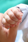 New born Baby's hand Stock Images