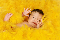 New born baby surrounded in feathers. Happy new born baby girl in a bed of yellow feathers Stock Photo