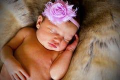 New born baby. stock photography