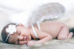 New Born Baby. stock photos