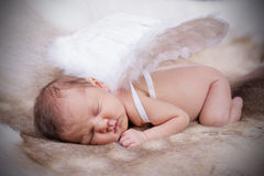 New Born Baby. Royalty Free Stock Image