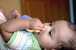 New Born biting toy Stock Photography