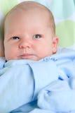 New born boy Royalty Free Stock Photography