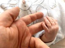 New born. Family member - family concept Stock Photography