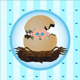 New born gift card. Image of a newborn boy popping out of an egg Royalty Free Stock Photography