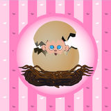 New born gift card. Image of a newborn girl popping out of an egg Stock Images