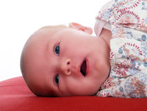 New born infant portrait laying on red pillow Royalty Free Stock Image