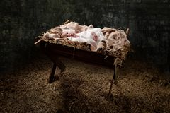 New Born Jesus on a Manger. With light coming from above royalty free stock photos