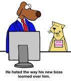 New Boss Stock Photos