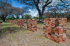 New Brick for repairing. The Ayutthaya Historical Park Royalty Free Stock Photography