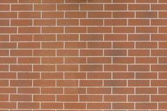 New brick wall. Royalty Free Stock Images