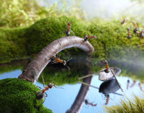 New bridge and scrounger boatman, ant tales Royalty Free Stock Photography