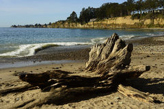 New Brighton State Beach and Campground, Capitola, California Royalty Free Stock Images