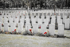 The New British Cemetery world war 1 flanders fields Royalty Free Stock Photo