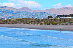 New Briton Beach Christchurch - New Zealand Royalty Free Stock Photography