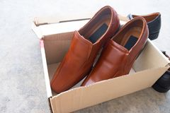 New brown male shoes. On box brown Royalty Free Stock Photography