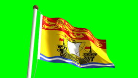 New Brunswick flag stock video footage