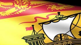 New Brunswick Flag Waving. Video footage stock video