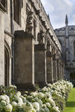The New Building of Oxford Magdalen College, Royalty Free Stock Photography