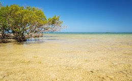 Free New Caledonia Ocean Scenic Stock Photography - 91887492
