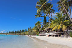 New Caledonian beach. Isle of Pines, New Caledonia, South Pacific Royalty Free Stock Photos