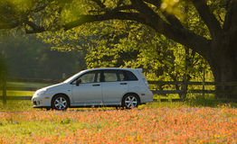 New car in meadow of red flowers Stock Image