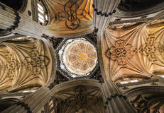 New Cathedral of Salamanca, Spain Royalty Free Stock Photo