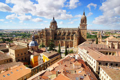 New Cathedral. Salamanca Stock Photography