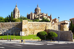 New Cathedral. Salamanca Royalty Free Stock Photos