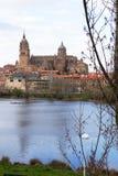 New Cathedral of Salamanca, Spain Royalty Free Stock Photos