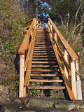 New Cedar Trail Stairs. A new set of public trail stairs coming down a steep cliff to an ocean access Royalty Free Stock Photo