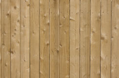 New cedar wood fence background. In sunlight Stock Image