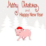 New 2019. Chinese year of the pig. A postcard with a funny pig in Santa`s hat and a winter landscape. Colorful vector royalty free illustration