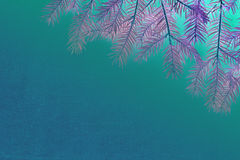 New Christmas background with real pine tree branches Stock Photo