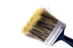 New Clean Paint Brush ready for Painting on White Stock Image