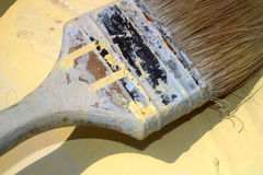 A New Coat. A paintbrush at an angle royalty free stock images