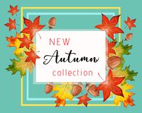 New collection banner for Autumn with fall leaves. New collection banner for Autumn with colorful seasonal fall leaves and acorns for shopping discount stock illustration