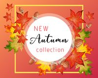 New collection circular banner for Autumn with fall leaves. New collection banner for Autumn with colorful seasonal fall leaves and acorns for shopping discount vector illustration