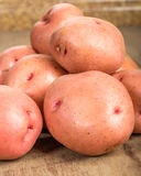 New crop red potatoes on table Royalty Free Stock Photo
