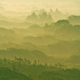New dawn. Beautiful misty dawn, soft colors Royalty Free Stock Image