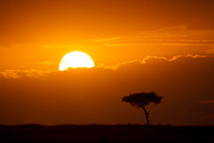 A New Day. Sunrise over the plains of East Africa, Maasai Mara National Reserve, East Africa stock photo