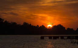 New day in the Danube Delta. Sunrise shot in early summer morning in Danube Delta, Romania Royalty Free Stock Image