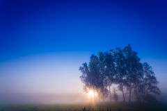 A new day. Waiting to start the day Royalty Free Stock Image