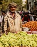 New Dehli Indien, Februari 19, 2018: Mannen säljer druvor i gatavagn Arkivbild