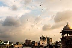 New Delhi himmel Royaltyfri Bild